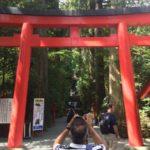 Portes Shintô au pied des forêts.